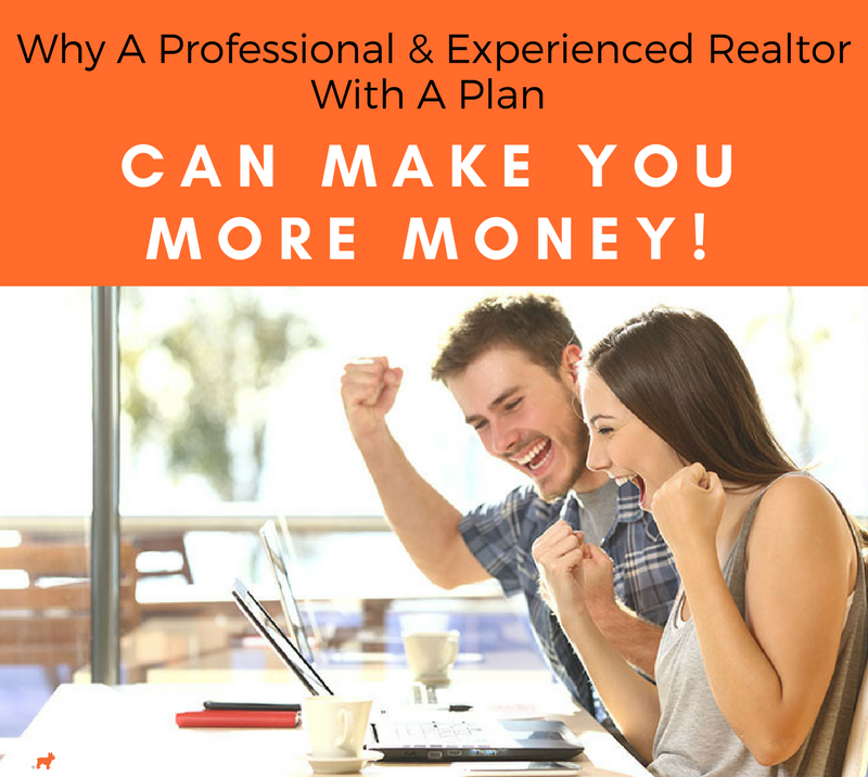 Why A Professional & Experienced Realtor With A Plan Can